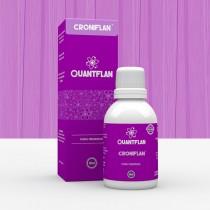 Croniflan - Quantflan